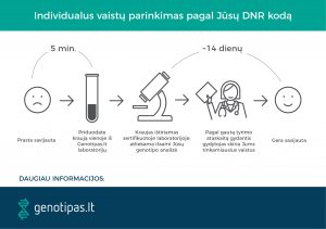 paciento kelias_Genotipas